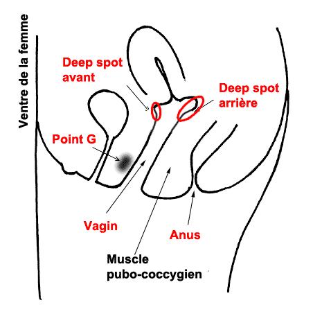deep-spot-1.png
